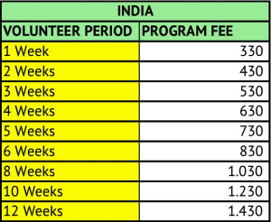 Volunteer in India program fees
