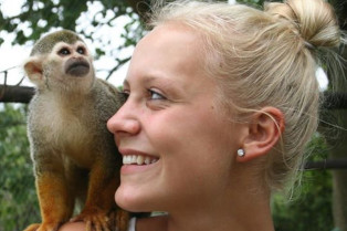 Volunteer Abroad in Animal Conservation Programs in South Africa