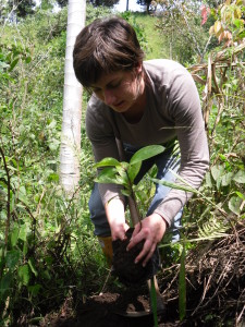 Volunteer in Ecuador plants a tree in the field