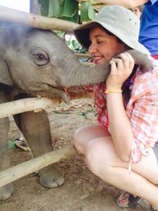 Animal preservation volunteer with elephants in Thailand