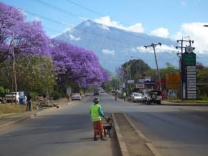 Volunteer in Tanzania Arusha