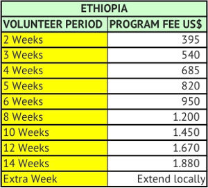 Fees Volunteer in Ethiopia