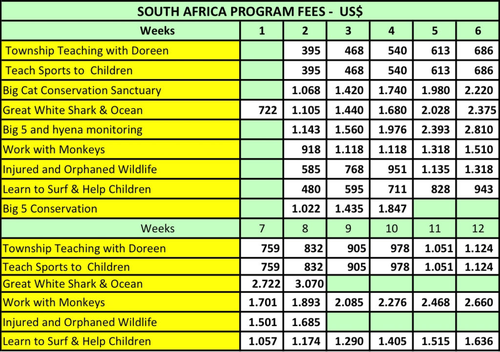 Volunteer In South Africa - Fees table