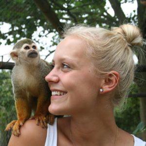 Save the Vervet Monkeys