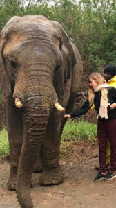 Camille Claus Mariette com um elefante