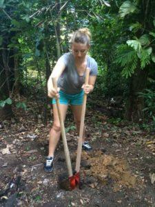 Environmantal Volunteer in Rio at the Tijuca Rainforest