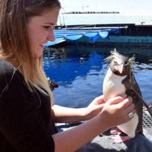 Marine Biology at the Aquarium in Cape Town
