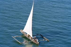 Conservação Marinha no Quênia