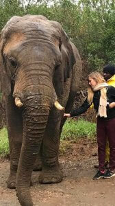 Camille Claus Marietti com elefante na África do Sul