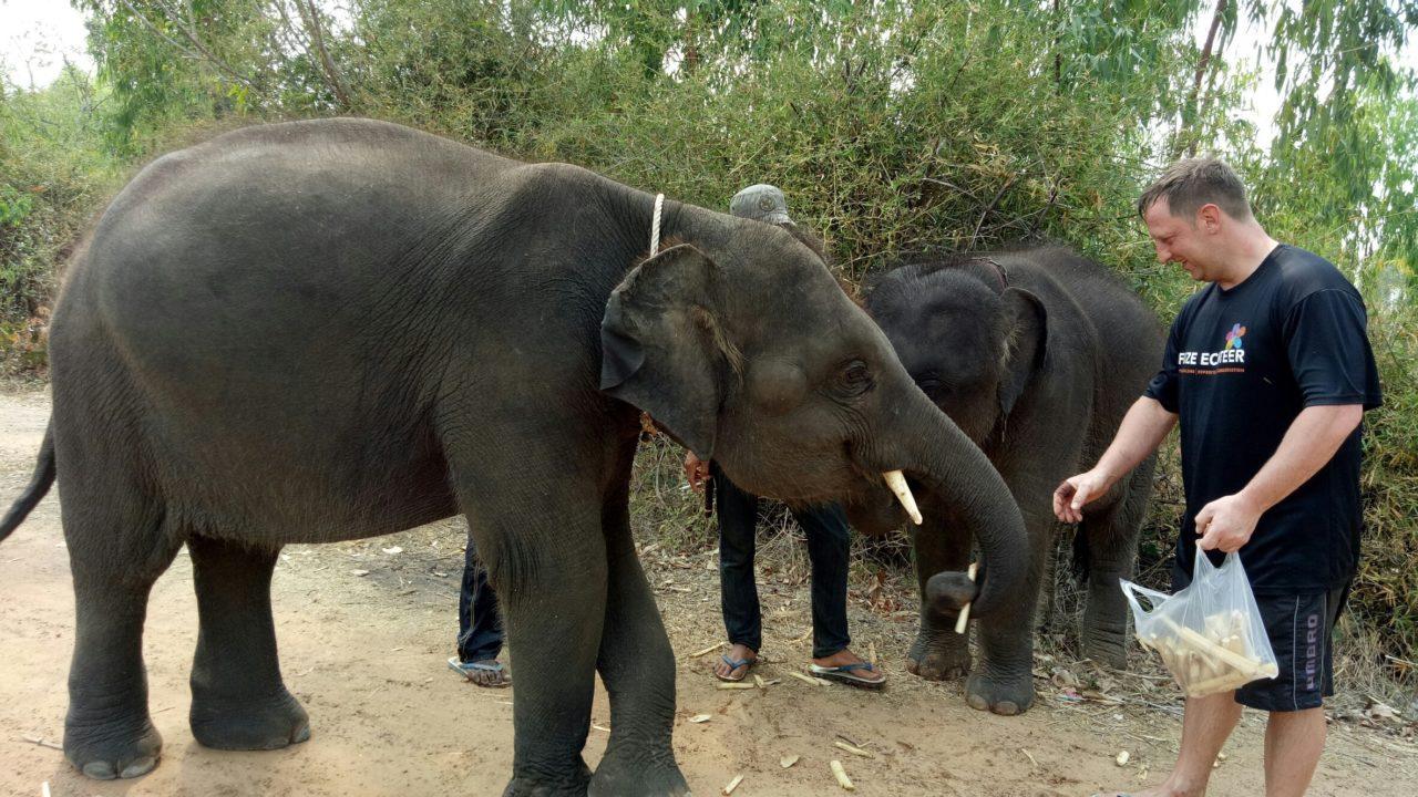 Vivendo com elefantes na Tailândia