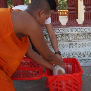 Monges budistas ajudam no resgate deos animais